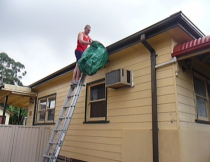 Gutter Cleaning and Leaf Removal