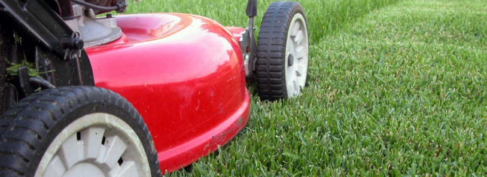 Lawn Mowing & Garden Care Services